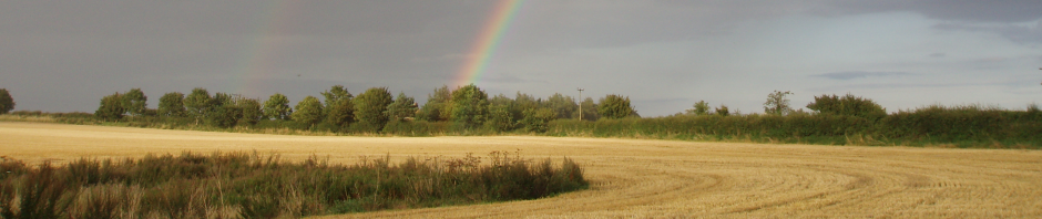 Norfolk_rainbow_field